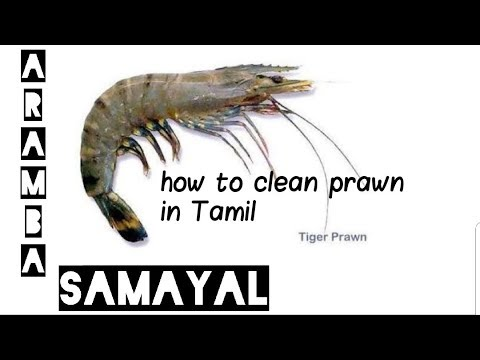 How to clean prawn in Tamil | Aramba Samayal |