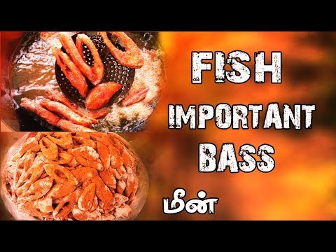 MARRIAGE TRADITIONAL FISH FRY|Village Food Recipes In Tamil